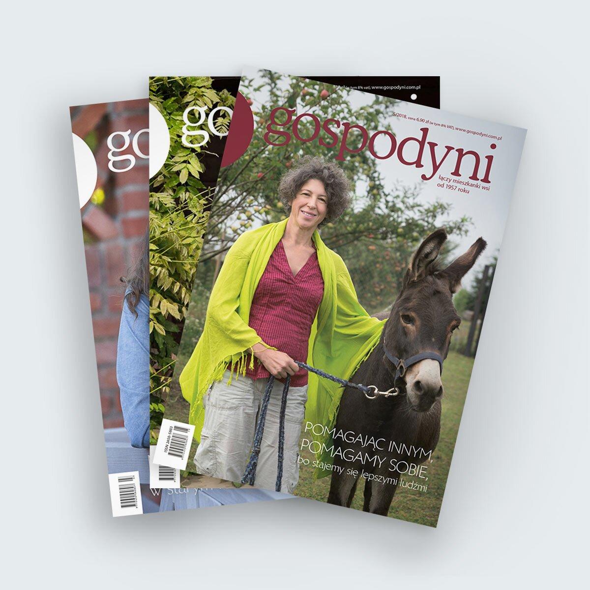 czasopismo gospodyni dla mieszkanek wsi i małych miasteczek prenumerata roczna